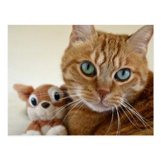 Carte Postale Chat tigré orange et son meilleur ami