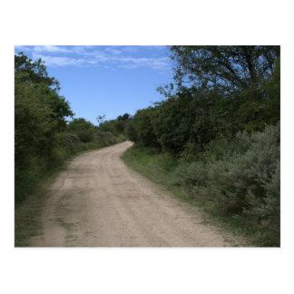 Carte Postale Chemin dans les dunes