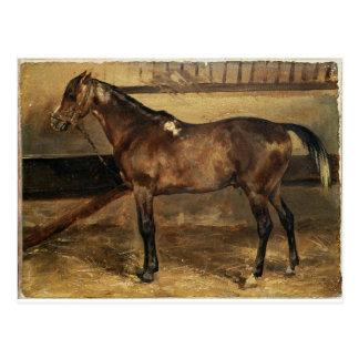 Carte Postale Cheval de Brown dans les stalles par Theodore