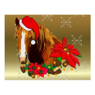 Carte Postale Cheval de Noël