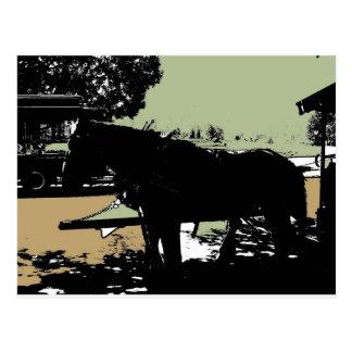 Carte Postale Cheval et chariot de parc de Stanley
