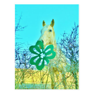Carte Postale Chevaux de cheval de shamrock