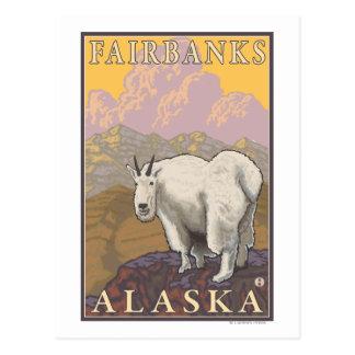 Carte Postale Chèvre de montagne - Fairbanks, Alaska