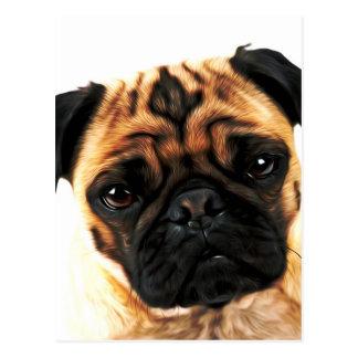 Carte Postale chien de carlin