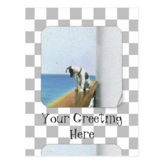 Carte Postale Chien sur le paquebot