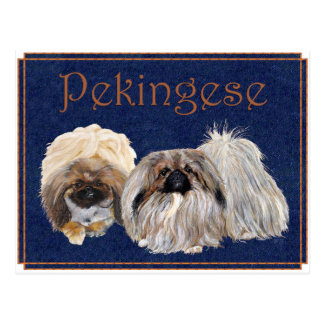 Carte Postale Chiens de Pekingese