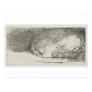 Carte Postale Chiot de sommeil par Rembrandt