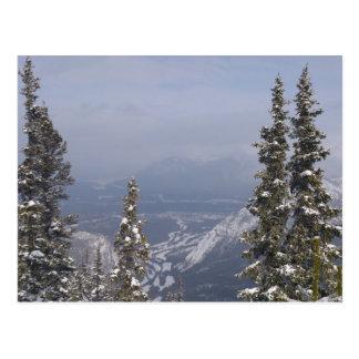 Carte Postale Ciel bleu d'hiver