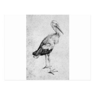 Carte Postale Cigogne par Albrecht Durer