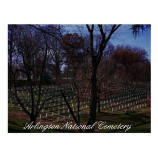 Carte Postale Cimetière national d'Arlington
