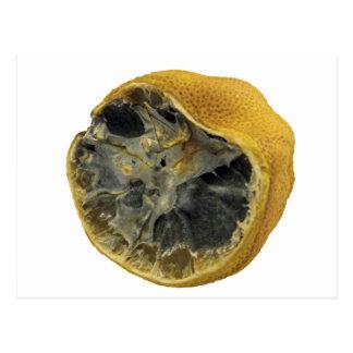 Carte Postale Citron putréfié