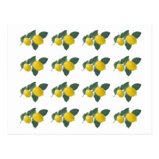 Carte Postale Citrons sur une branche