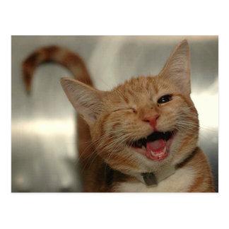 Carte Postale Cligner de l'oeil le chat heureux de gingembre