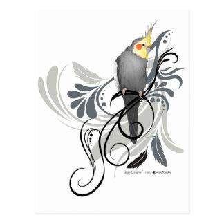Carte Postale Cockatiel gris