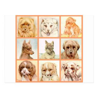 Carte Postale Collage de chien de bébé - MIGNON SUPERBE !
