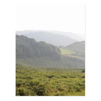 Carte Postale Collines vertes avec la brume