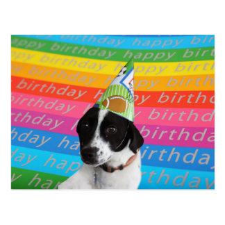 joyeux anniversaire chien noir et blanc