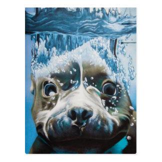 Carte Postale Conception de pitbull de plongée
