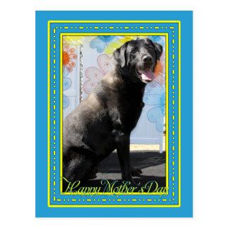 Carte Postale Corby - Labrador noir -4