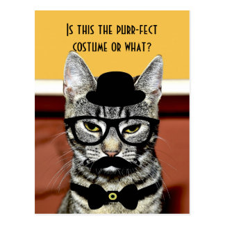 Carte Postale Costume de chat de Ronronnement-fect
