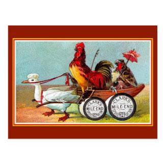 Carte Postale Coton drôle antique de bobine de canard de poulets