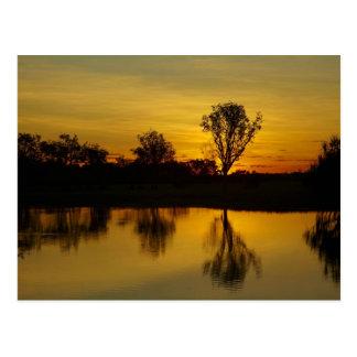 Carte Postale Coucher du soleil, l'eau jaune Billabong