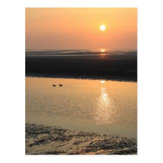 Carte Postale Coucher du soleil - nouveau Brighton