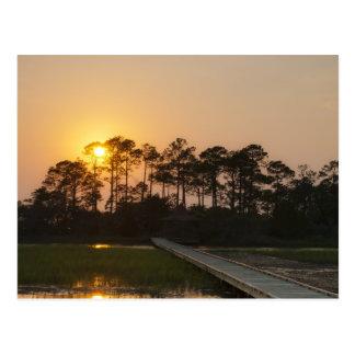 Carte Postale Coucher du soleil sur la côte de la Caroline