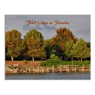 Carte Postale Couleur de chute, la Floride Shoreline