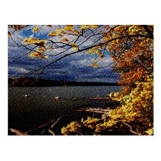 Carte Postale Couleurs de chute, arbre surplombant par l'eau