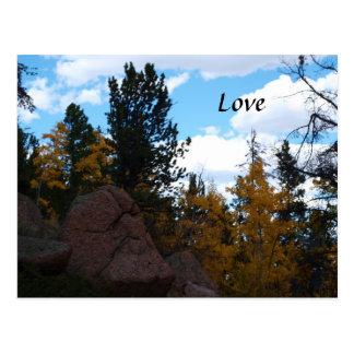 Carte Postale Couleurs de chute au Wyoming