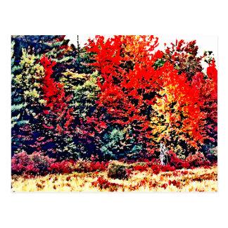 Carte Postale Couleurs de chute en Nouvelle Angleterre