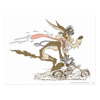 Carte Postale Coureur de cycle d'E. Coyote de Wile