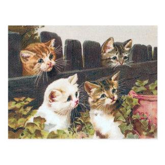 """Carte Postale Cru de """"quatre chatons"""""""
