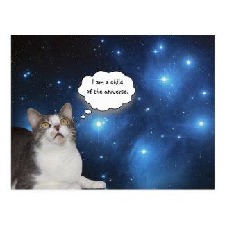 Carte Postale Curieux drôle d'étoile de chat