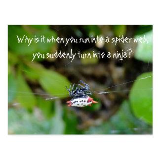 Carte postale d'araignée de crabe/citation drôle