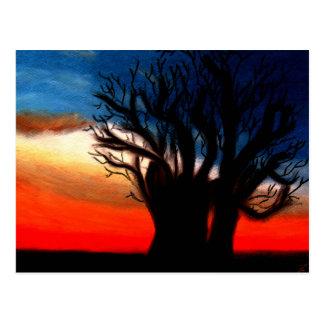 Carte postale d'arbre de Pari Chumroo Baobob