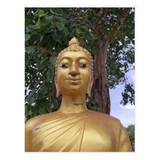 carte postale de Bouddha