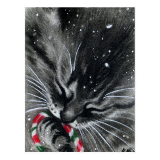 Carte postale de chat de chaton de sucre de canne