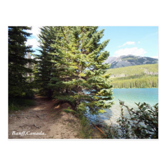 Carte postale de chemin de marche de Banff