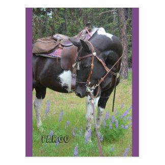 Carte postale de cheval de Fargo de jument de
