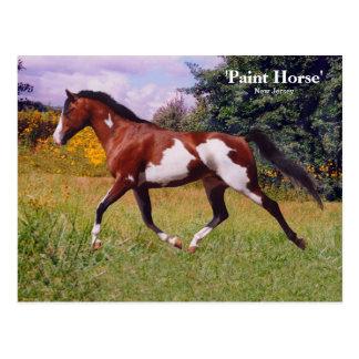 Carte postale de cheval de peinture de ressort