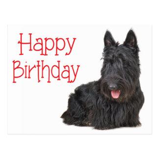 Carte postale de chiot de Terrier d'écossais de