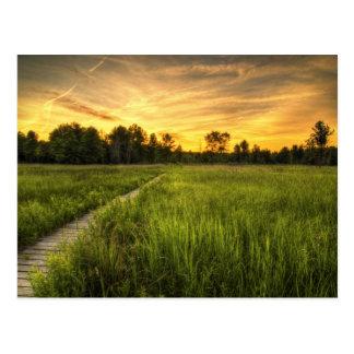 Carte postale de coucher du soleil de prairie