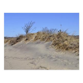 Carte postale de dune de sable