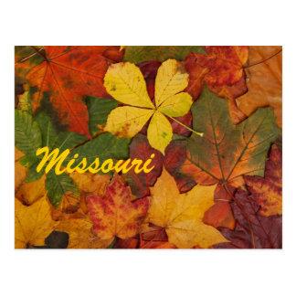 Carte postale de feuille d'automne du Missouri