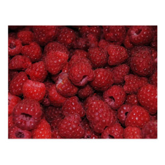 Carte postale de framboises rouges