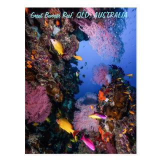 Carte postale de la Grande barrière de corail