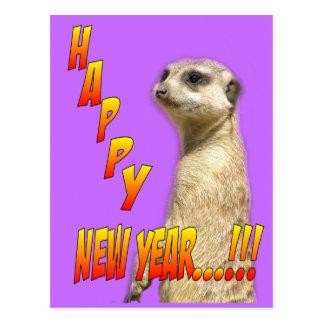 Carte postale de Meerkat de bonne année