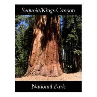 Carte postale de parc national des Rois Canyon de